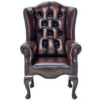 Icon Designs St Ives Kids Queen Anne Leather Armchair in Brown