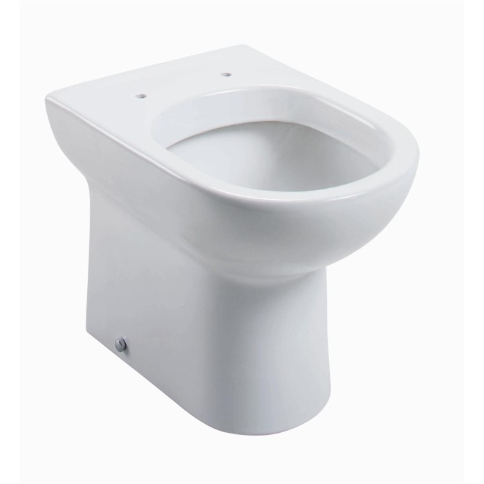 large d shaped toilet seat. D Shape Back To Wall Toilet  Without Seat Furniture123